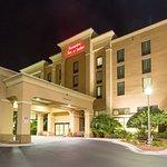 Hampton Inn & Suites Jacksonville-Airport Foto
