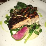 Salmon - Awesome!
