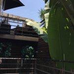 Photo of Pacifica, Langosta-Bar