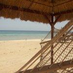 Photo of Gorgonia Beach Resort