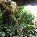 Vienna Schmetterling Haus - waterfall and landscaping