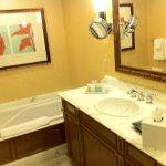 Large tub sink with amenities