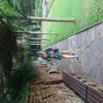 Photo of Durban Botanic Gardens