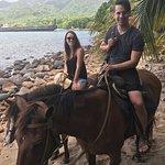 Rainforest Riding