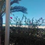 IMG_20170514_150911_large.jpg