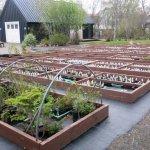 Foto di Arctic Botanical Gardens (Lystigardurinn)