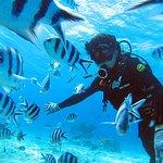 Photo de Marine Club Gigi