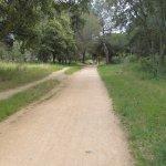Gravel biking and walking path