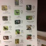 Birding checklist.