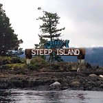 Steep Island - wildlife tour