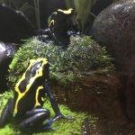 Sea Life Melbourne Aquarium Foto
