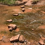 Stepping stone crossings