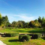 Impressive garden
