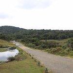 inside National park