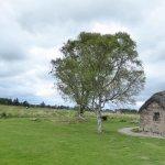 Foto de Culloden Battlefield