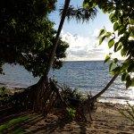 Photo of Selayar Dive Resort