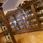 Photo of MUSA - Museo Universitario delle Scienze e delle Arti