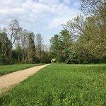 Photo de Simeria Arboretum