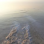 死海の有料ビーチ