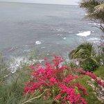 Sinclairs Bay View Foto