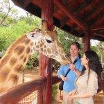 Photo de African Fund for Endangered Wildlife (Kenya) Ltd. - Giraffe Centre