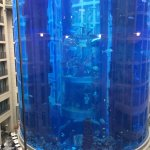 Aquarium in the hotel
