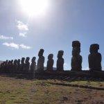 15 standing moabs
