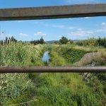 Piscine - Espace de Liberté du Grand Narbonne