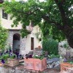 Villa Il Paradisino Picture