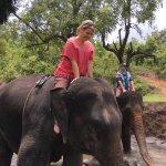 Foto di Patara Elephant Farm - Private Tours