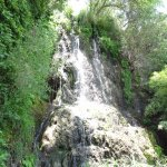 The waterfall at the garden.