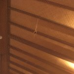 I dont see anything luxury about an old and tired hotel. My mosquito net was full of holes. I di