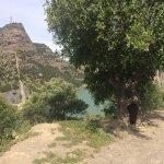 Foto de The Olive Branch