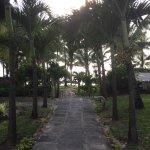 Veranda Palmar Beach-billede