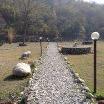 Walk towards River Kosi