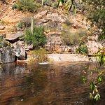 Wading/swimming pool in creek