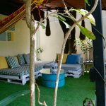 Mi Casa Hostel Photo