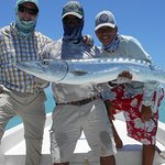 Barracuda cought on a 10 wt fly rod while fishing for a variety of species of other game fish.
