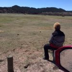 Watching the prairie dogs.