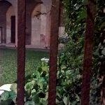 scorcio del giardino segreto
