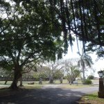 Photo de Parque Josone