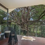 Cape Cottage Deck and Fig Tree