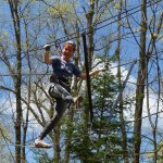 Tree top tracking