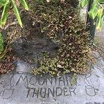 Photo de Mountain Thunder