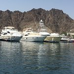 Great day out with Sidab sea tours