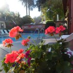 HEATED POOL MAY - OCTOBER