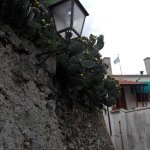Photo of Ravello-Minori Walk