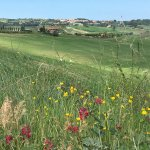 Farewell photo with Gabriele; favorite views of Pienza and Bagno Vignoni