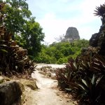 One of the amazing views at Tikal.