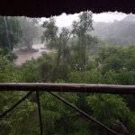 View From Marc's Treehouse #5 (Rained every morning)